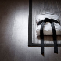 The Role Of The Black Belt